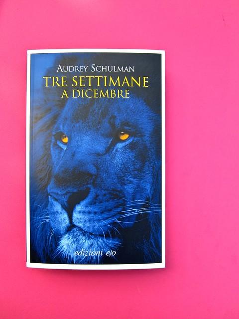 Audrey Schulmann, Tre settimane a dicembre. edizioni e/o. Grafica di Emanuele Gragnisco. Copertina (part.), 1