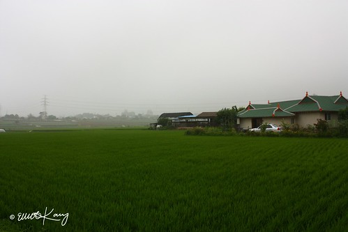 """IMG_3062 - """"A Country House"""""""