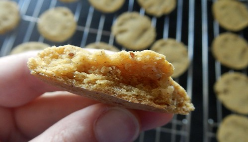 Gluten-Free Pumpkin Dog Biscuits 10