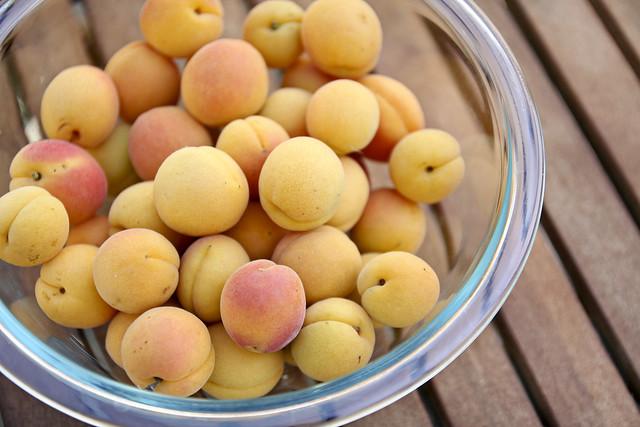 free apricots