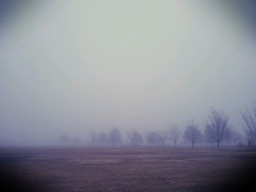 It's A Foggy Day! by Luke A. Bunker