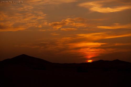 Desert Sunset by TARIQ-M