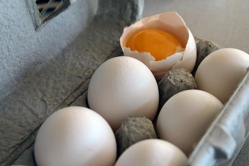 only a yolk