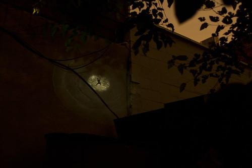 Nightlight_JasonEppink__2