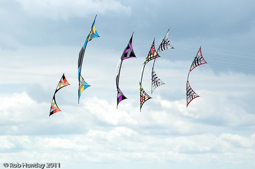 Group of Revolution kites (Rev kites) at the Windscape Kite Festival 2011