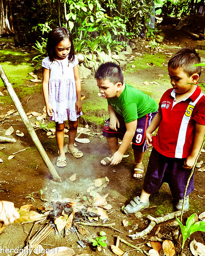 They gathered dry leaves to build a fire.