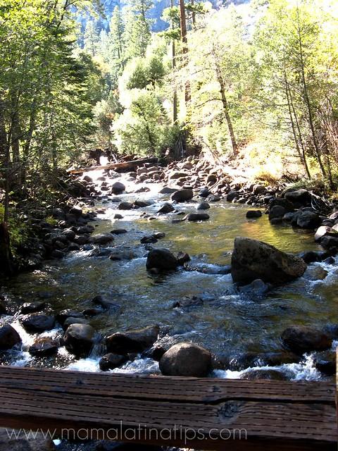 River from Bridge