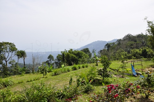 Magic Garden - Thailand, Koh Samui (28 of 42)