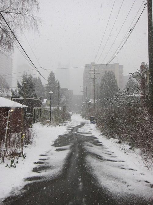 Actual Winter Wonderland