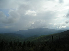 mountain, rainy, weather, Clingman's dome, Marie Bittinger, Tennessee