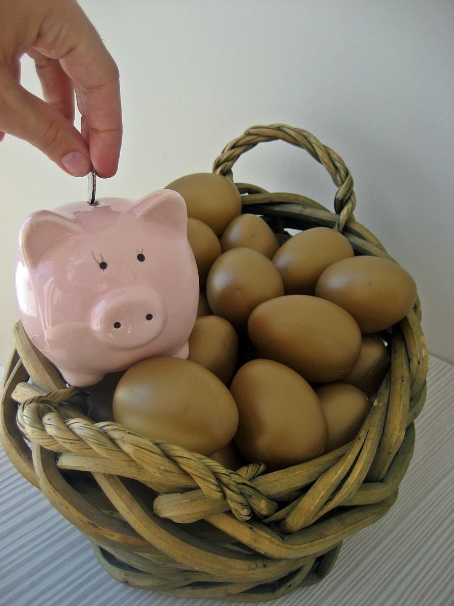 Nest Egg - Savings