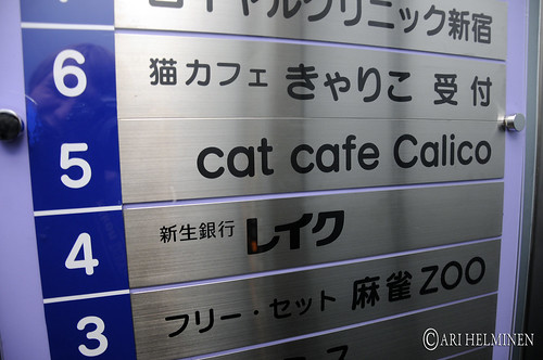 Cat cafe at Shinjuku
