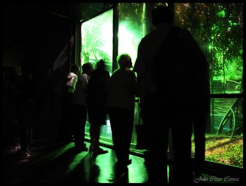 Parque Explora-Medellín by Julio César Correa