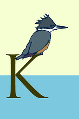 k is for kingfisher