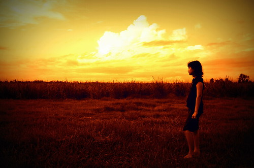 DSC_0359_Dec2011-_lomo