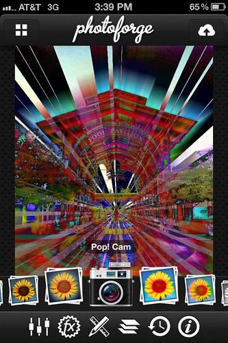 Camera Roll-188