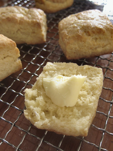 Cream biscuit with butter