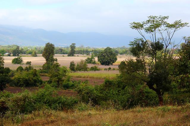 Cycling to a vineyard near Nyaungshwe