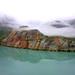 Near Johns Hopkins Glacier, Alaska