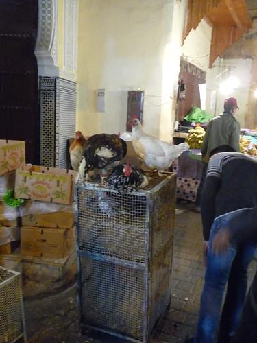 pollos listos para comer