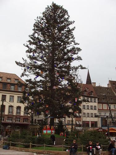 200612120086_Christmas-Strasbourg-tree