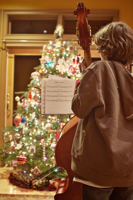 Christmas tree serenade