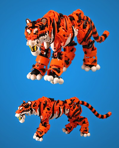 Tiger 2 by retinence