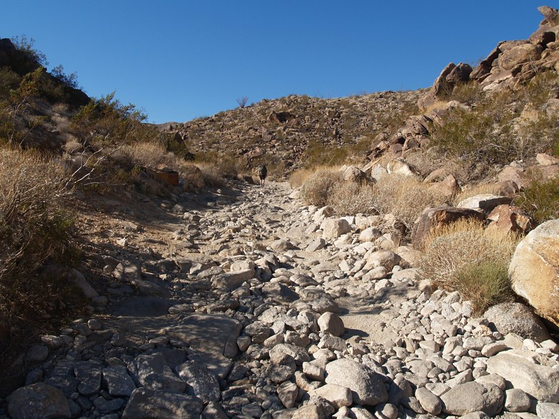 The 4WD section of Coyote Canyon Road. 4WD pretty much mandatory!