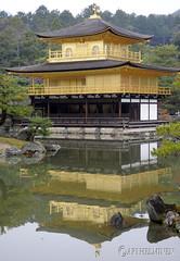 Kinkakuji-temple 鹿苑寺金閣