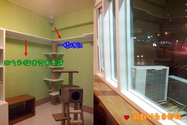 貓咪論壇 - [推薦]臺中貓咪旅館