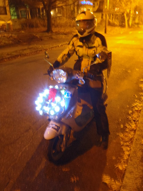 Random weeknight pic arriving home after the commute: Buddy decked out in his holiday finery