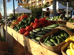 Fort Pierce Farmers Market
