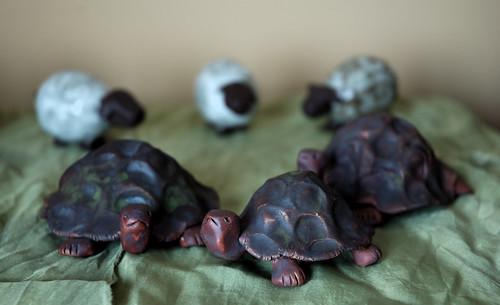 Turtles & Sheep