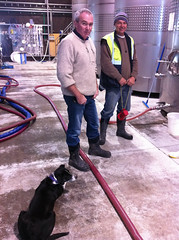 Kevin Judd (c) with his dog and cellar assistant