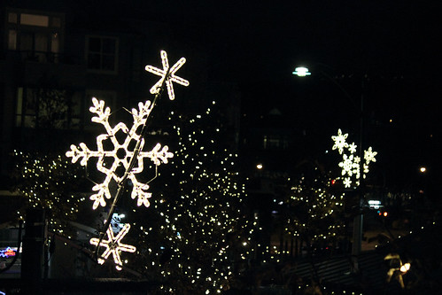 42 - Holiday Lights