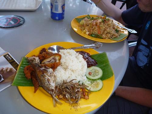 Nasi Lemak and Chicken Rice