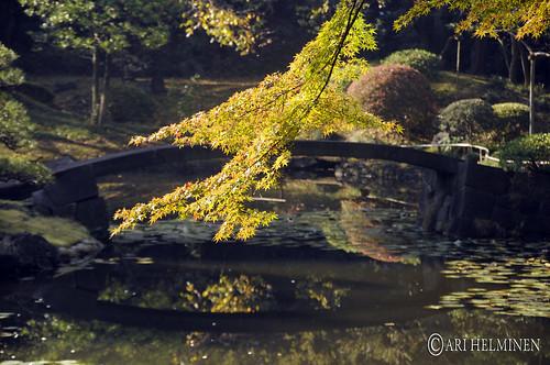 A day in Koishikawa Korakuen Garden 小石川後楽園
