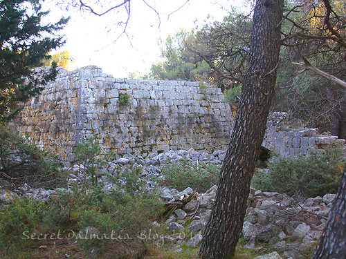 The fortress in the woods