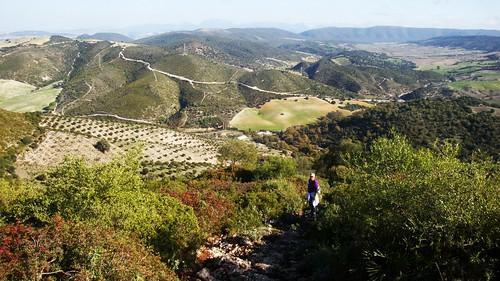 Cerro de la Cruz (San José del Valle)