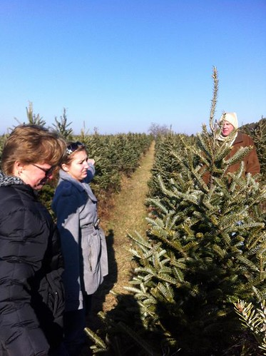 Janesville Tree Farm 12-11-11 009