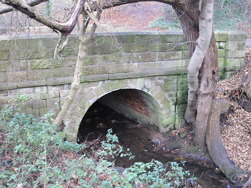 Slip Inn Bank, Bridge