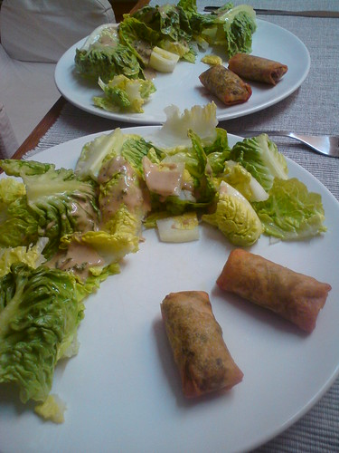 appetizer: salad with homemade dressing and thai spring rolls by the real Caffeamore