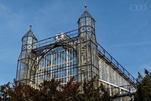 Precious old greenhouses...