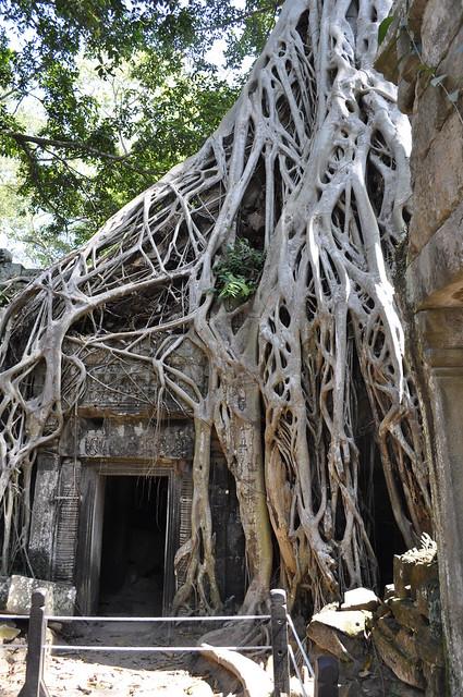 2011-11-24 Siem Reap 47