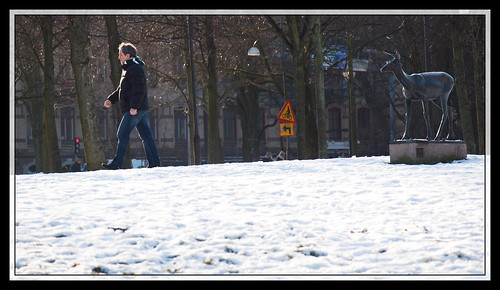 31/366 - I will follow you.. by Flubie