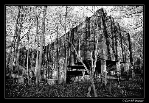 Derelict In The Woods