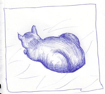 cat-ballpoint-bookVL