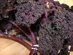 farmers market - red kale