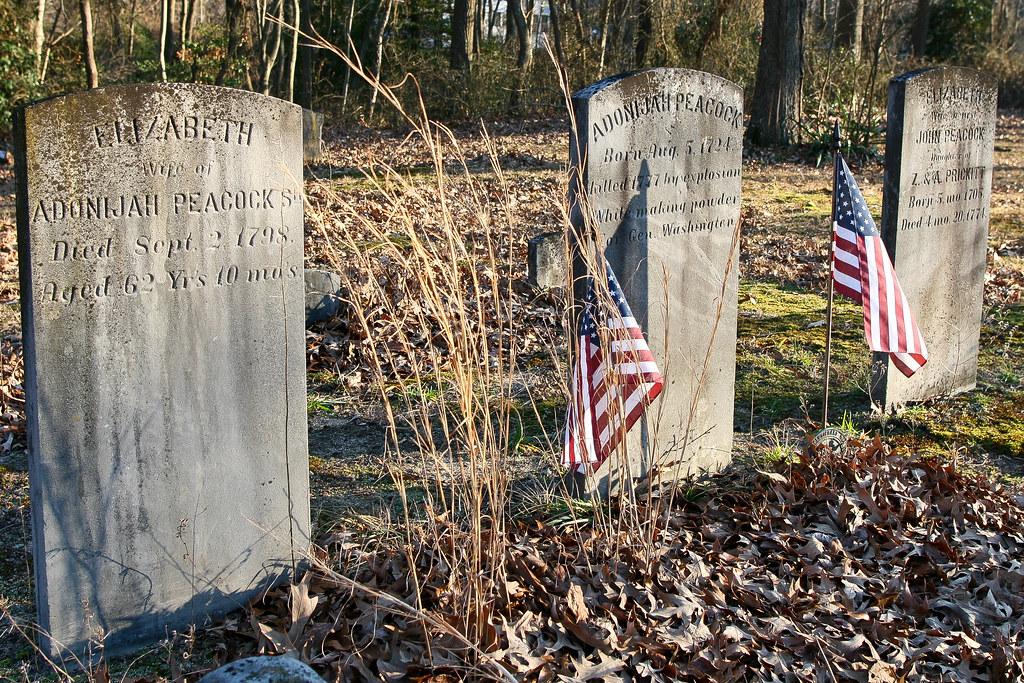 "Peacock, Eliz, b. 22 Nov 1735, d. 2 Sep 1798, w/o Adonijah Sr; Peacock, Adonijah Sr, b. 5 Aug 1724, ""killed 1777 by explosion making powder for Gen. Washington""Peacock, Elizabeth (Prickitt), b. May 1705, d. 20 Apr 1774"