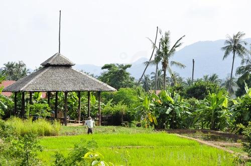 Koh Samui (107 of 116)